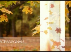MONALISA TOUCH ® – 重拾你的女性特质
